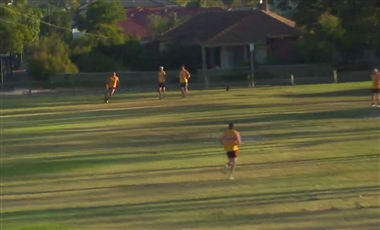 Training For AFL: Decision Making Rebound